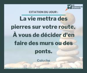 citation : La vie mettra des pierres sur votre route. À vous de décider d'en faire des murs ou des ponts.